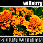SOUL FLOWER TRAIN